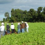 SOILmgt News & Events