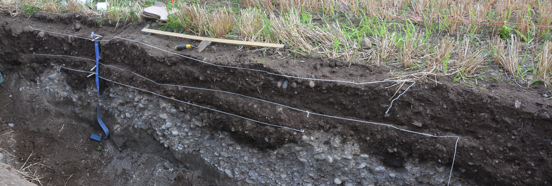 Soil profile at Ireland soil conference
