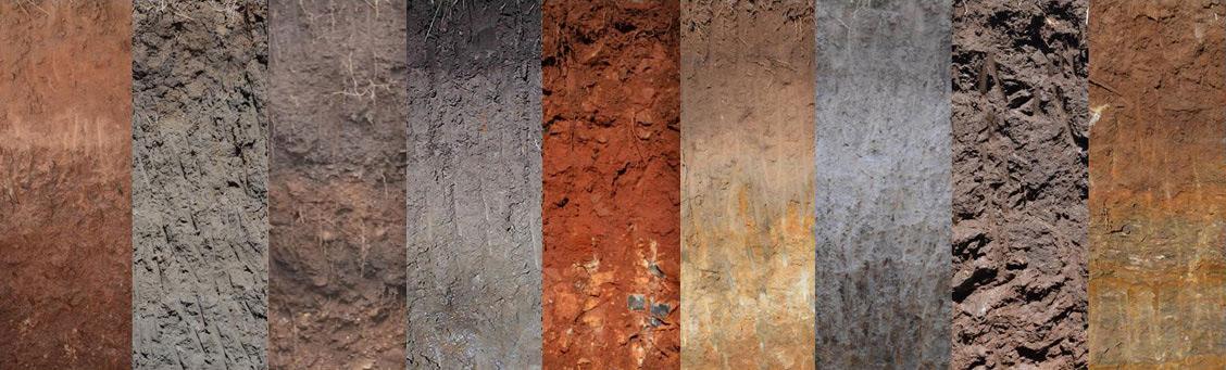 Soil profile collage Soil Management Designs