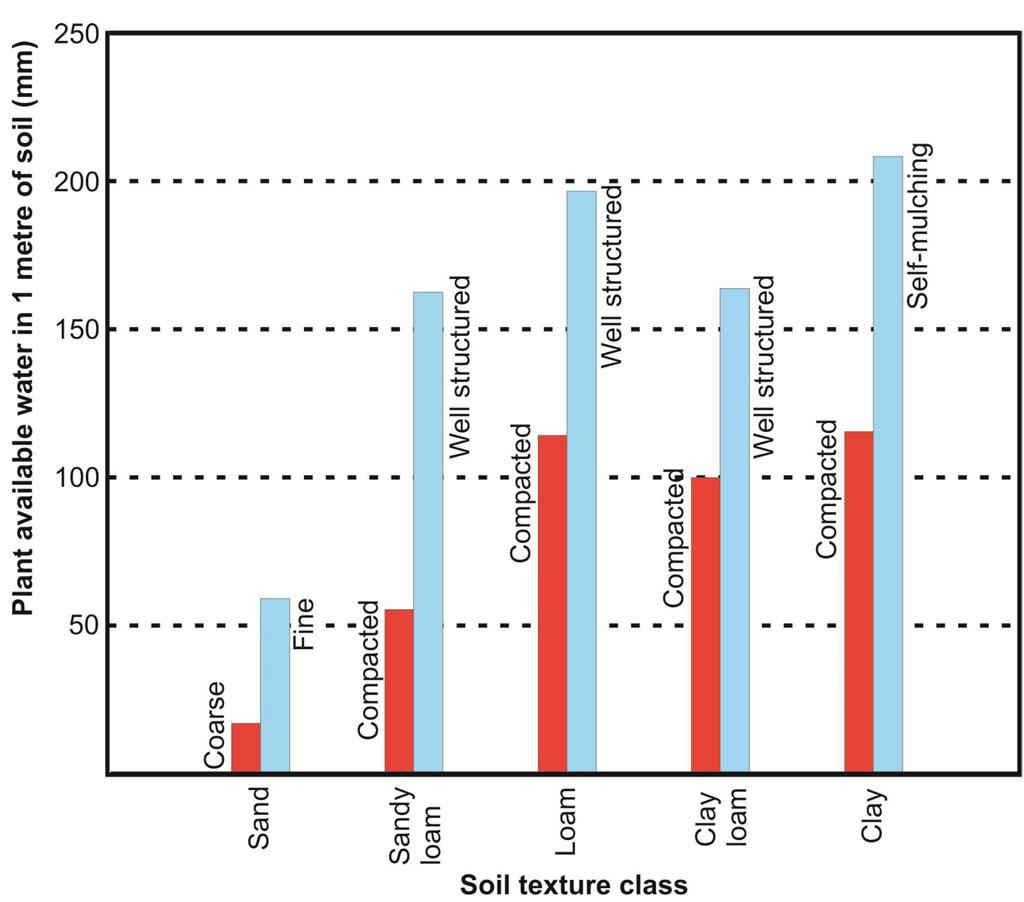 Soil water storage graph